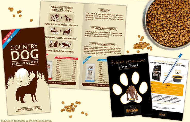 brochure promocard